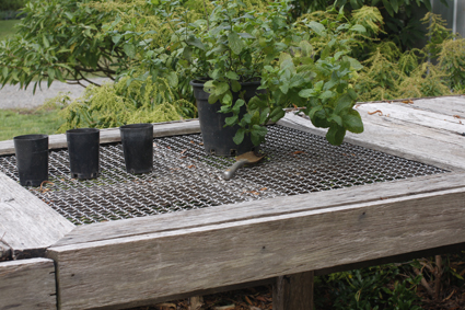 stainless steel woven mesh wire crimp bench