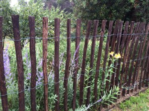 wattle-&-wire-fence-stainless-steel-wire